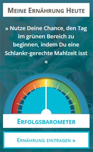 schlankr erfolgsbarometer